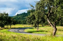 Landscape with road Royalty Free Stock Photo