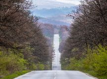 landscape, the road up and down along the forest to the colorful mountains stock photography