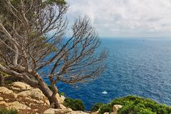 Landscape of rocky coast before a storm under gloomy dramatic sky royalty free stock photography