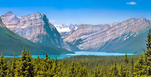 Landscape with Rocky Mountains in Alberta, Canada Royalty Free Stock Image