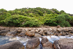 Landscape rocky tropical beach. Palm tropical beach. Landscape rocky coast ocean Stock Photography