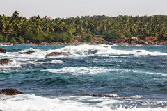Landscape rocky tropical beach. Palm tropical beach. Landscape rocky coast ocean Stock Photo