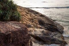 Landscape rocky tropical beach. Palm tropical beach. Landscape rocky coast ocean Royalty Free Stock Images