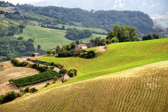Landscape in Romagna (Italy) Stock Photography