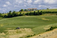 Landscape in Romagna at summer: fields Royalty Free Stock Photo