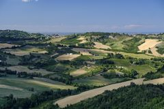 Landscape in Romagna at summer from Sogliano al Rubicone Royalty Free Stock Photos