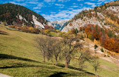 Landscape in Romania Stock Photography