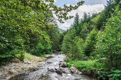 Landscape in Romania. In summer 2016 romania Royalty Free Stock Photography