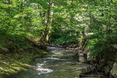 Landscape in Romania. In summer 2016 romania Royalty Free Stock Image
