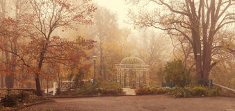 Landscape. romantic gazebo in the park in the morning fog. late Stock Photos