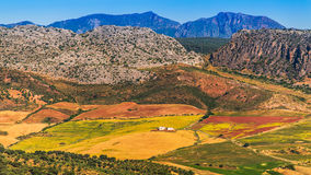 Landscape in rural,  Andalusia, Spain. Royalty Free Stock Photos