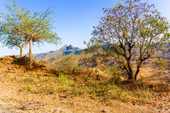 Landscape in the rural area in Ethiopia Stock Image
