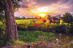 Landscape of rural atmosphere at sunset.  Stock Photography