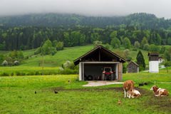 Landscape of rural Austria Royalty Free Stock Photo