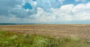 Landscape of rural field with green hills on the horizon. Blue sky with big white clouds. Empty agricultural field with. Some green grass and white wild flowers stock images