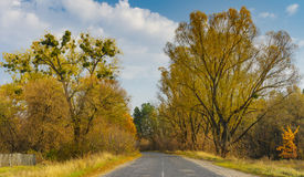 Landscape with rural road in Sumskaya oblast, Ukraine Royalty Free Stock Photography
