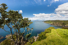 Landscape from Russell near Paihia, Bay of Islands, New Zealand Stock Photos