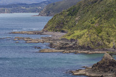 Landscape from Russell near Paihia, Bay of Islands, New Zealand Royalty Free Stock Photography