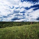 landscape ryssen arkivfoto
