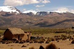 Landscape in Sajama, Bolivia. Royalty Free Stock Photo