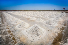 The landscape of Salt fields in Thailand Stock Photos
