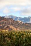 Landscape in Salta Royalty Free Stock Photo