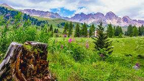 Landscape at the San Pellegrino Pass 1918 m in the Italian Dol. Landscape at the San Pellegrino Pass 1918 m. It`s a high mountain pass in the Italian Dolomites Royalty Free Stock Photography