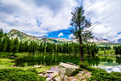 Landscape at the San Pellegrino Pass 1918 m in the Italian Dol Royalty Free Stock Images