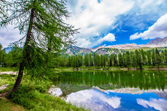 Landscape at the San Pellegrino Pass 1918 m in the Italian Dol Stock Photography
