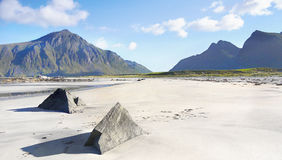 Landscape Sand Beach royalty free stock images