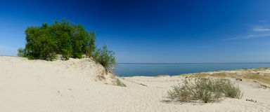 Landscape Curonian Spit Stock Image