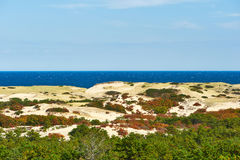 Landscape with sand dunes at Cape Cod. Massachusetts, USA Royalty Free Stock Photography