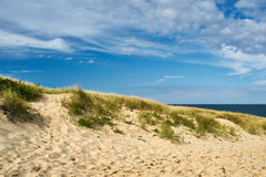 Landscape with sand dunes at Cape Cod Stock Photos