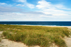 Landscape with sand dunes at Cape Cod Royalty Free Stock Photography