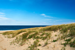 Landscape with sand dunes at Cape Cod Royalty Free Stock Photos