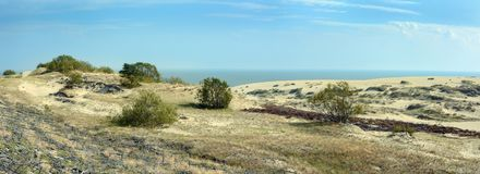 The landscape of the sand dunes Royalty Free Stock Photography