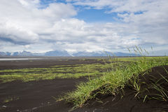 Landscape with sand dunes and green grass, Iceland Royalty Free Stock Image