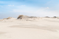 Landscape with sand dunes on the island Norderney, Germany stock photography