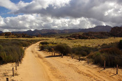 Landscape - sand road in rocky desert of Africa Stock Images