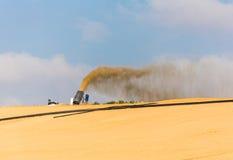 Landscape of sandy desert Royalty Free Stock Images