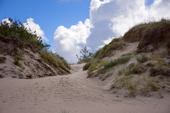 Landscape with sandy dunes Royalty Free Stock Images