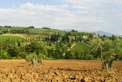 Sant'Antimo (Tuscany) Stock Photos