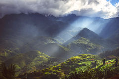 Landscape of Sapa, north of Vietnam Stock Images