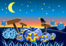 Landscape with scary pumpkin. At night Vector Illustration