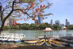 Landscape scene of beautiful Lumphini public park important land Royalty Free Stock Images
