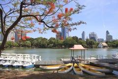 Landscape scene of beautiful Lumphini public park important land. Mark in heart of Bangkok Thailand royalty free stock images