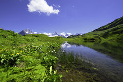Landscape Scene from First to Grindelwald, Bernese Oberland, Swi Royalty Free Stock Images
