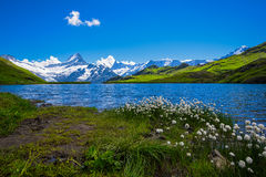 Landscape Scene from First to Grindelwald, Bernese Oberland, Swi Royalty Free Stock Photo