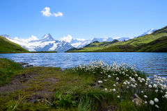 Landscape Scene from First to Grindelwald, Bernese Oberland, Swi Stock Images