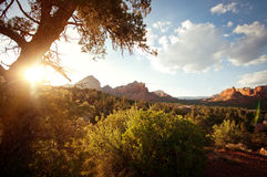 Landscape scene of red rock mountains with sunlight. Landscape with sunlight in the red rock mountains in Sedona, Arizona in the American southwest Royalty Free Stock Photos
